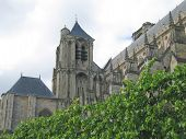 Saint Etienne Cathedral With A Tree In Foreground, Bourges, France