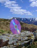 Dvd Disk