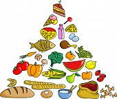 food pyramid, vector illustartion on the withe background