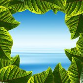 Frame made of fresh green leaves with tropical ocean view as a background.