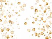 Gold Seashells Vector, Golden Pearl Bivalved Mollusks. Cartoon Scallop, Bivalve Pearl Shell, Marine  poster