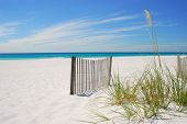 Gorgeous white sandy beach and sand dune fence overlooking beautiful ocean under pretty sky