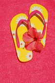 Brightly colored flip flop sandals and tropical hibiscus flower