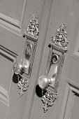 beautiful brass door handles on entry