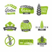 Gluten Free Drawn Isolated Sign Icon Set. Healthy Lettering Symbol Of Gluten Free. poster