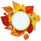 Autumnal round frame with fall leaves