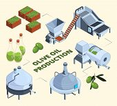 Olive Manufacturing. Oil Production Processes Plant Food Press Industry Farm Tank Centrifuge Bottles poster