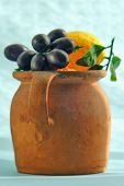 Plastice Fruit