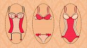 The collection of vintage corset lingerie in decorative background vector