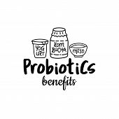 Probiotics Benefits. Good Bacteria, Food And Medicine. Gut Bacterial Flora. Fermentation Products. V poster