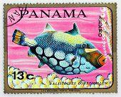 PANAMA - CIRCA 1978: A stamp printed in Panama shows tropical reef fish Balistoides Conspicillum, circa 1978