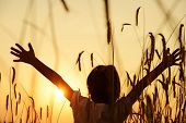 foto of fall-wheat  - Kid at wheat field - JPG