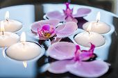 Floating candle and orchid flower