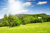 Spring landscape in the national park Sumava - Czech Republic