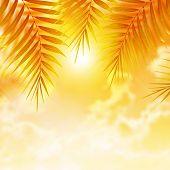 Las hojas de Palma hermosa sobre fondo naranja puesta del sol, tropical resort de lujo, day spa, playa de la isl