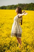 stock photo of beatitudes  - Woman spread out his hands in delight on a sunny evening - JPG