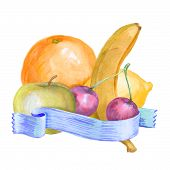 Fruit Composition Water Color