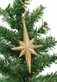 Golden star on a christmas branch