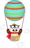 Owl in a Hot Air Balloon