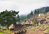 Delphi In Fog