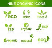 Nine organic icons for ecological topics.