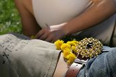 stock photo of friendship belt  - belly of a girl with dandelions laying on it - JPG