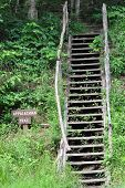 picture of appalachian  - One of the many entry points to the strenuous Appalachian Trail - JPG