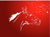 picture of gad  - vector horse gad on a red with a snowflakes - JPG