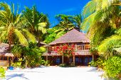 Beautiful House To A Reed Roof Standing On A White, Sandy Beach Amidst Palm Trees. Summer Vacation.