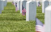 veterans cemetery memorial celebration with American Flag