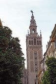 The Giralda Tower In Seville, Spain Vertical