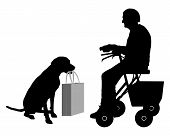 stock photo of rollator  - Detailed and accurate illustration of old woman with dog - JPG