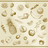 foto of black-cherry  - hand drawn fruits and muesli collection - JPG