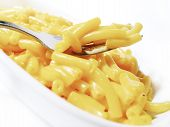 Macaroni And Cheese 1