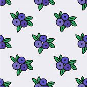 Seamless pattern with blueberry. Vector illustration.