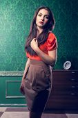 Fashionable Woman In Vintage Room