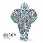 Vintage elephant illustration