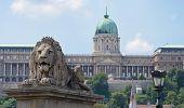 Lion And Castle