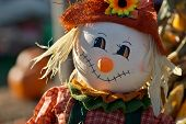 Little cute scarecrow