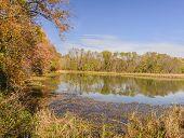 Autumn and Lake Conestee