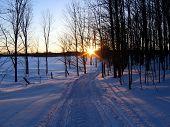 Making Tracks bei Sonnenuntergang