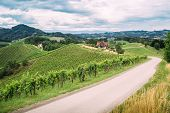 foto of southern  - Wine Trail in Southern Styria with some Clouds - JPG