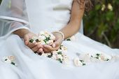 foto of bud  - Close up of a bride or a girl doing her first holy communion holding small rose buds - JPG
