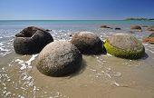 picture of maori  - Moeraki Boulders are perfectly spherical rocks on the beach at Moeraki near Oamaru - JPG