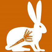 picture of hare  - Vector illustration of hare with carrot on orange background - JPG