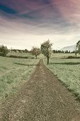picture of farmhouse  - Dirt Road Leading to the Farmhouse in the Swiss Alps Vintage Style Toned Picture - JPG