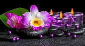 image of calla  - spa background of purple orchid dendrobium green leaf Calla lily and candles on black zen stones with drops panorama - JPG