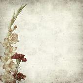 stock photo of gladiolus  - textured old paper background with orange gladiolus - JPG