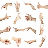 pic of nonverbal  - Collage of  hands showing different gestures - JPG