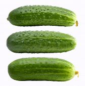 Cucumbers on the white background (isolated).